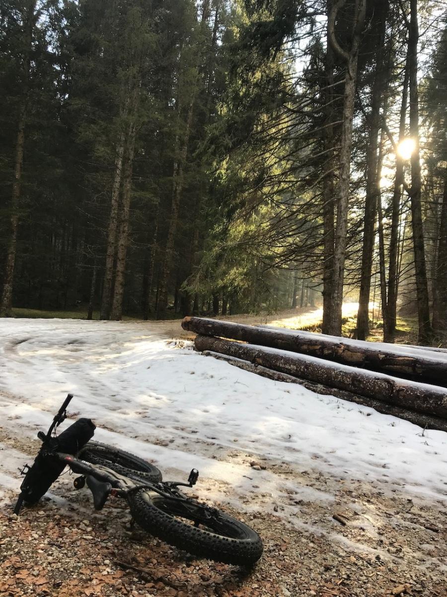 boschi-incantati-a-Roana